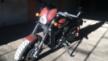 Harley-Davidson Street 750 2019 - Джимми