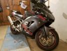 Kawasaki ZX-9R 2001 - Дэйвил