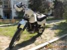 Suzuki DR650 1992 - Дружище