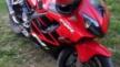 Honda CBR600F4i 2002 - Изольда