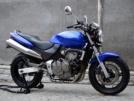 Honda CB600F Hornet 2001 - Пчела
