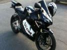 Honda CBR600RR 2005 - Ляля
