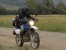 Suzuki Djebel 250XC 2001 - Дружище