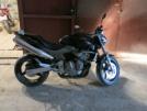 Honda CB600F Hornet 2004 - Шершень