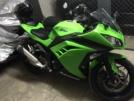Kawasaki Ninja 300 2014 - Greench