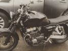 Honda CB1000 1993 - животное