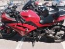 Kawasaki Ninja 300 2013 - Dante