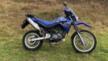 Yamaha XT660R 2004 - иксти