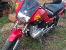 Yamaha YBR125 2012 - Малыш
