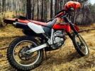 Honda XR250R 2001 - Рино