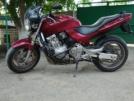 Honda CB600F Hornet 1999 - Жужа