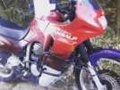 Honda XL600V Transalp 1997 - Носорог 2.0