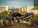 Honda CB900F Hornet 2003 - Пчёл