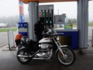 Harley-Davidson 1200 Sportster Custom 2002 - Мопед