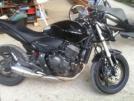 Honda CB600F Hornet 2010 - Немытый мот