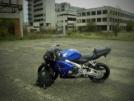 Honda CBR600RR 2008 - Красавица