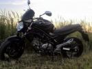 Suzuki Gladius 2012 - Гладиатор