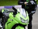 Kawasaki 250R Ninja 2009 - жаба