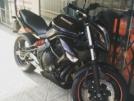 Kawasaki ER-6n 2010 - Ёрш