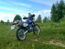 Suzuki Djebel 250XC 2000 - Дюбель