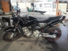Honda CB600F Hornet 2001 - Жужик