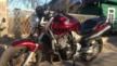 Honda CB900F Hornet 2006 - Пчела