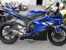 Yamaha YZF-R6 2006 - Шерсть