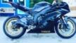 Yamaha YZF-R6 2009 - шерсть