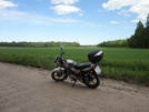 Yamaha YBR125 2011 - Серый