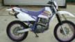 Yamaha TT250R 1994 - Raid