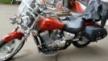 Honda VT750C Shadow 2012 - лоШАДка