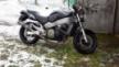 Honda CB1100 X-11 2000 - Бегемот