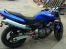 Honda CB600F Hornet 2000 - хорек