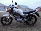 Yamaha YBR125 2013 - Мотик