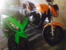 Kawasaki Ninja 300 2013 - эльф