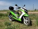 Racer Dragon 150 2013 - Кузнечик