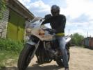 Honda CB600F Hornet 2000 - шмел