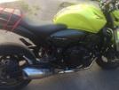 Honda CB600F Hornet 2009 - Желток