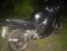 Honda CBR1100XX Super Blackbird 1998 - Старая Падла