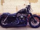 Harley-Davidson 1200 Sportster Custom 2008 - молодой еще