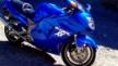 Honda CBR1100XX Super Blackbird 2000 - Дроздушка