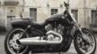 Harley-Davidson VRSCF V-Rod Muscle 2012 - V-Rod