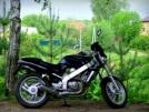 Honda BROS NT400 1990 - BROSЬКА