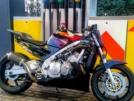 Honda CBR600F 1996 - Dog