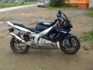 Yamaha YZF600R Thundercat 2000 - Кот