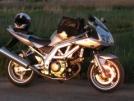 Suzuki SV650S 2003 - Эсвэха