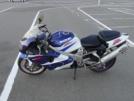 Suzuki TL1000R 2001 - TLR
