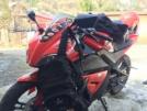 Patron Sport 250 2011 - Blaze 250