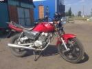 Senke SK150-6 2013 - Красный