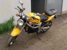 Suzuki SV650 2001 - жОлтый